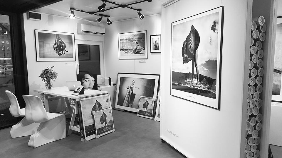 Brodziak Gallery